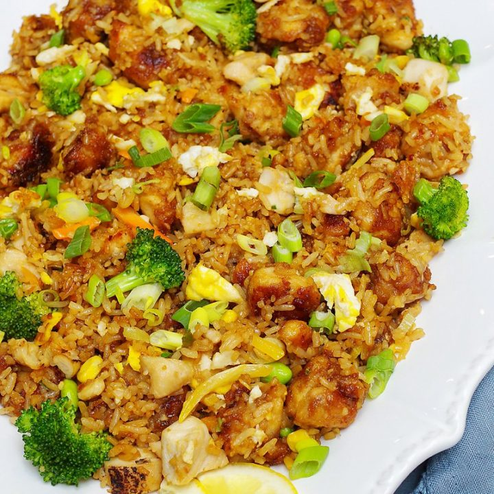 Teriyaki Fried rice dinner pin